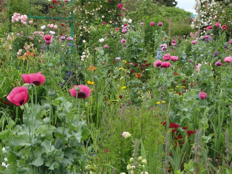 French gardens 2013 053