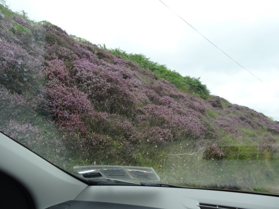 Driving through the narrow roads of the Trough of Bowland.