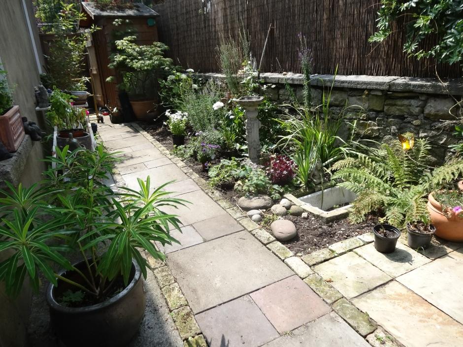 Gardens Aug 2013 001
