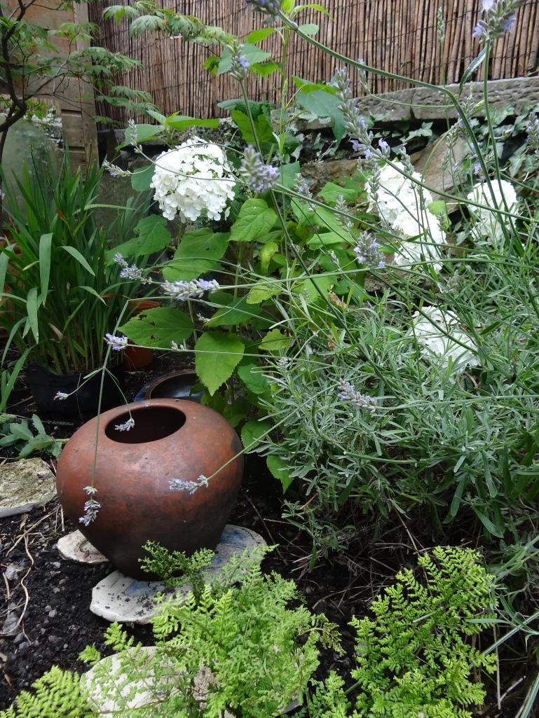 Gardens Aug 2013 025