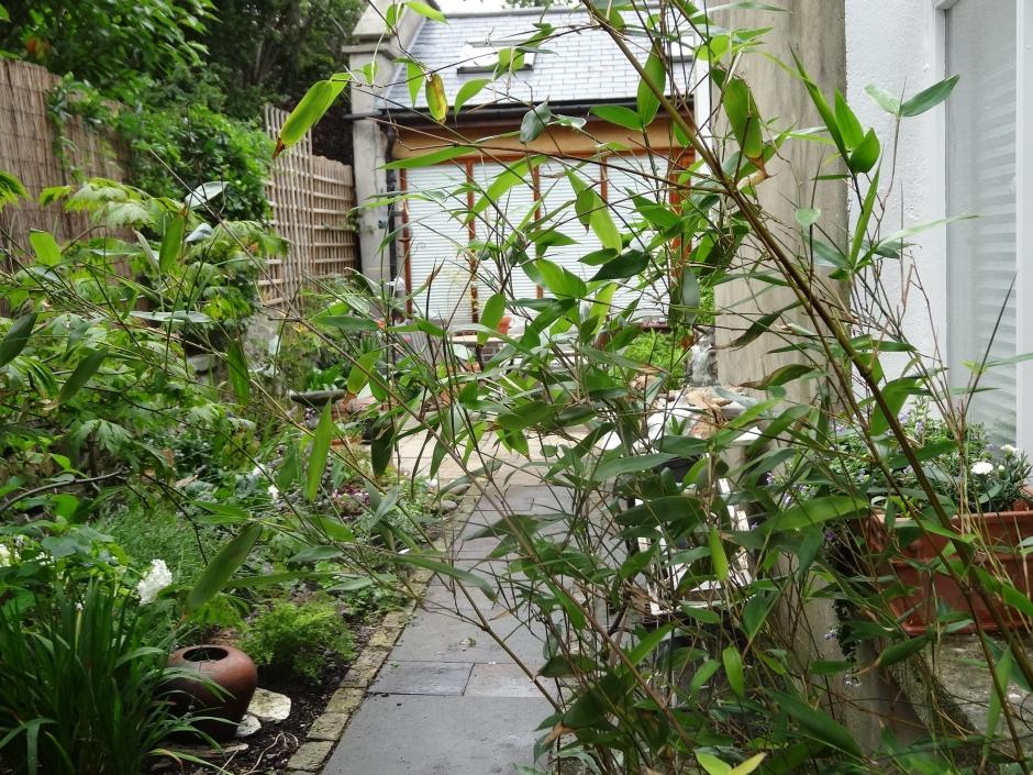 Gardens Aug 2013 032