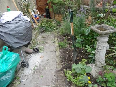 Small city garden : before