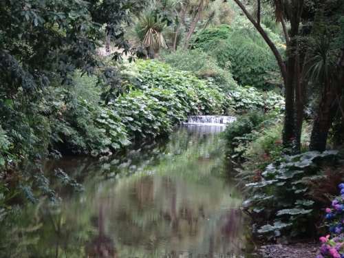 The river cascade, Mount Usher Gardens