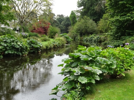 The river Vartry flowing through Mount Usher Gardens