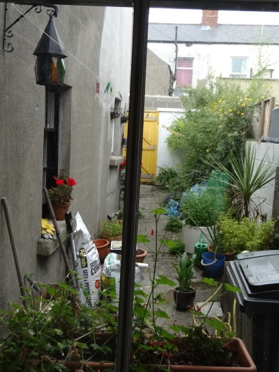 BEFORE : unused and unloved space behind a terraced house.