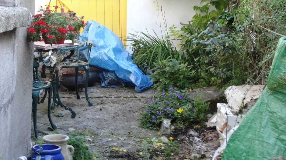 Ballymaloe Garden Fest 002