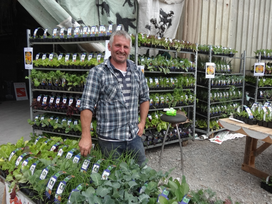 Pat Hennessy with his pesticide free plants