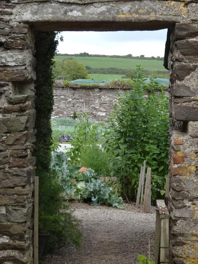Ballymaloe walled kitchen garden