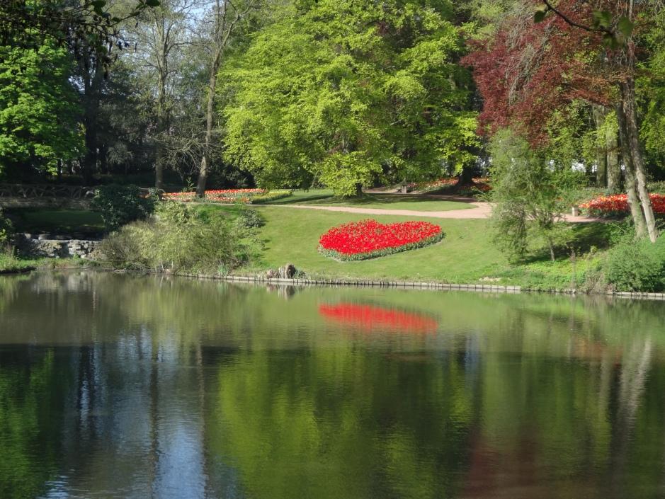 Tulip heart, Floralia