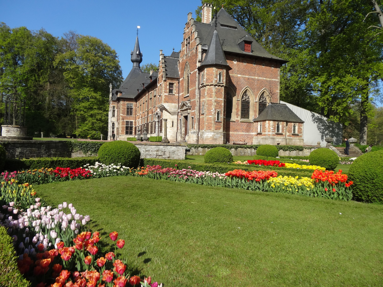 Tulip Mania | Jardin