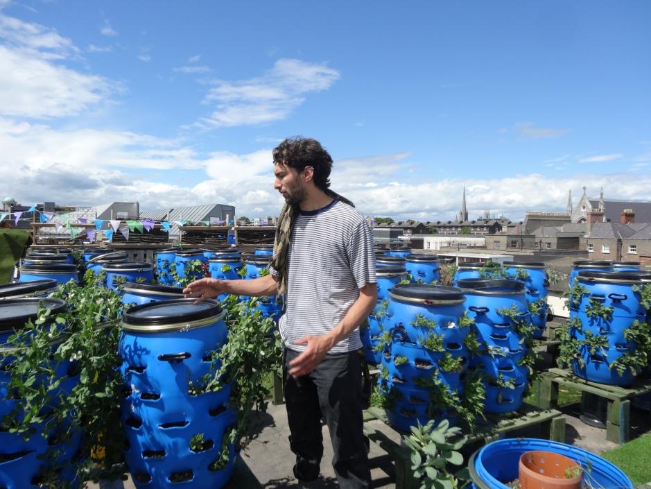 The rooftop Urban Farm