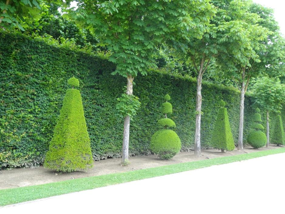 French gardens 2013 161