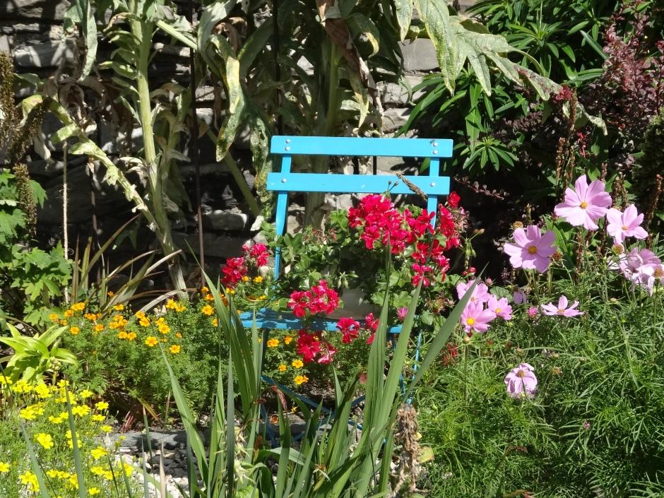 Gardens August 2013 019