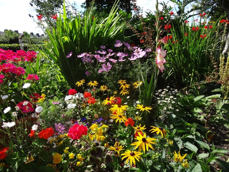 Gardens August 2013 020