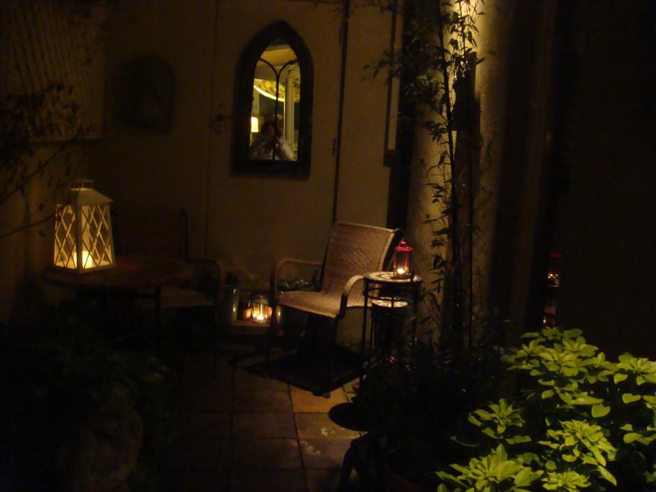 Gardens Dec 2012 009