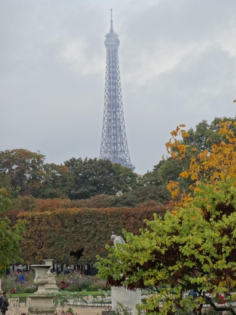 Autumn 2013 496