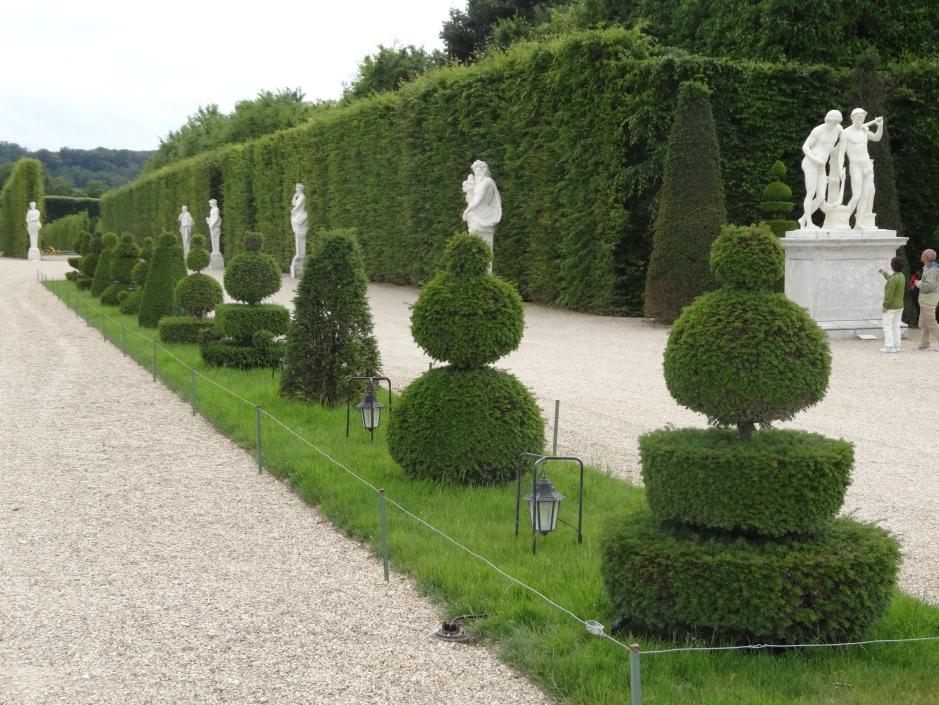 French gardens 2013 190