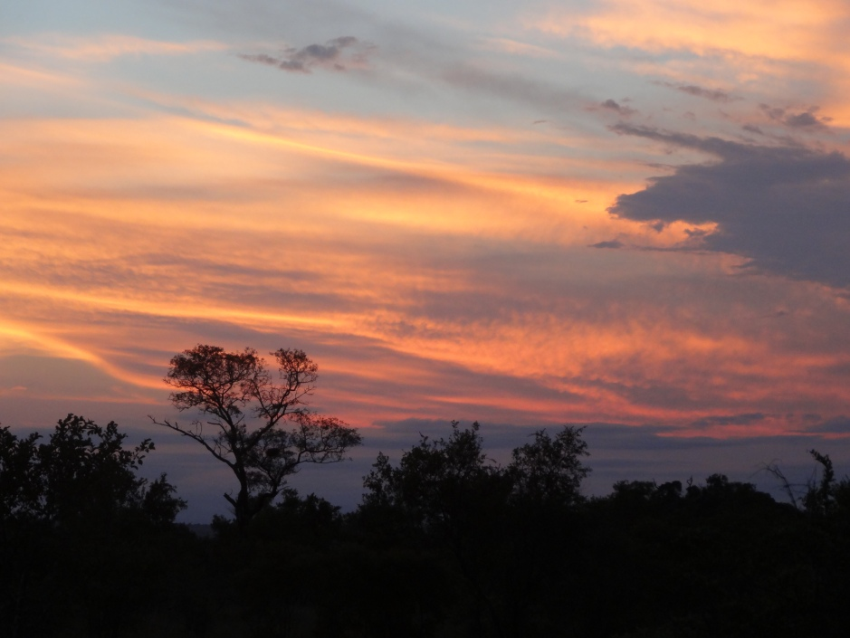 Southern Africa 2012 585