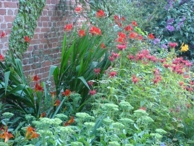 Sedum specatabile 'Autumn Joy' with  Monarda and Crocosmia 'Lucifer'