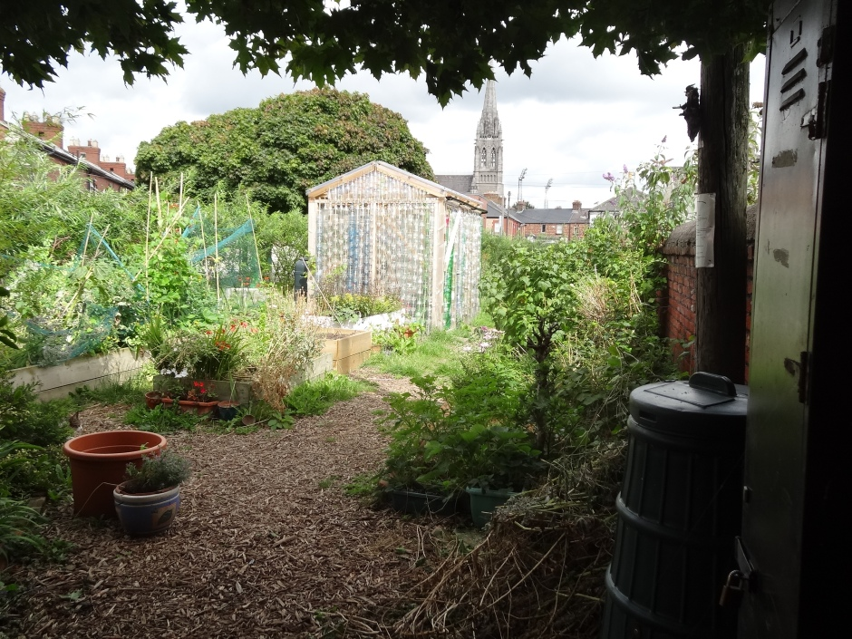 Is there a Community garden you can get involved with?  Serenity Community garden.