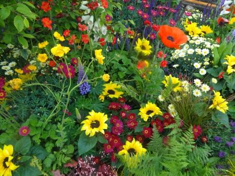 Irish garden design showcased bloom 2014 jardin for Garden design fest 2014