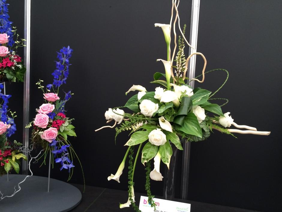 Bloom 2014 024