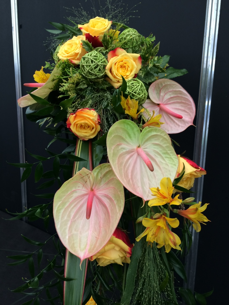 Bloom 2014 025