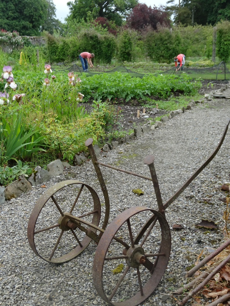 The walled kitchen garden, Burtown House