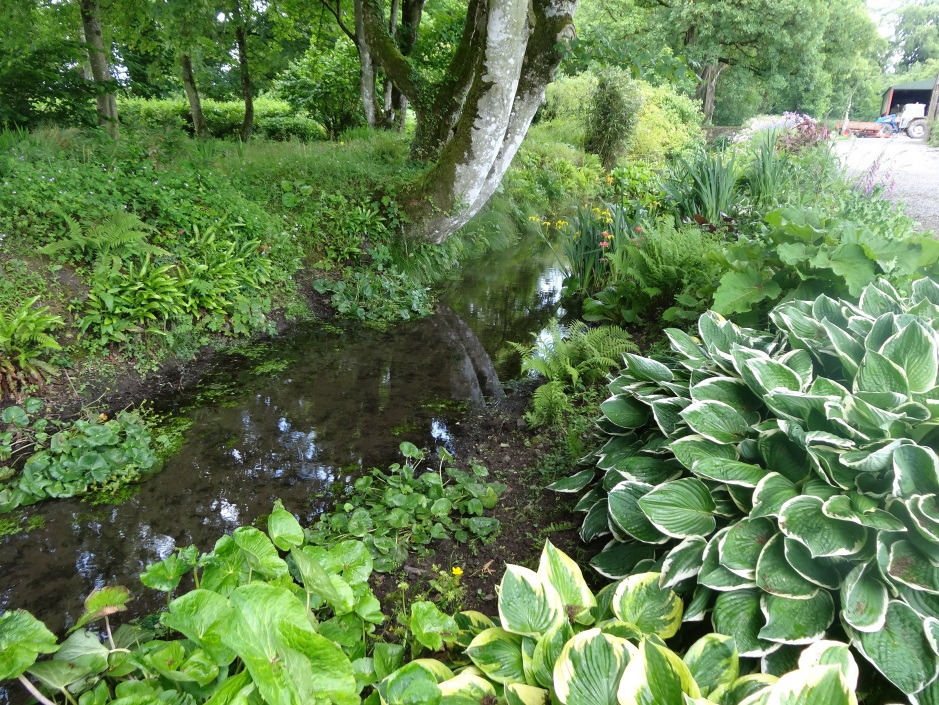The Stream garden, Burtown House