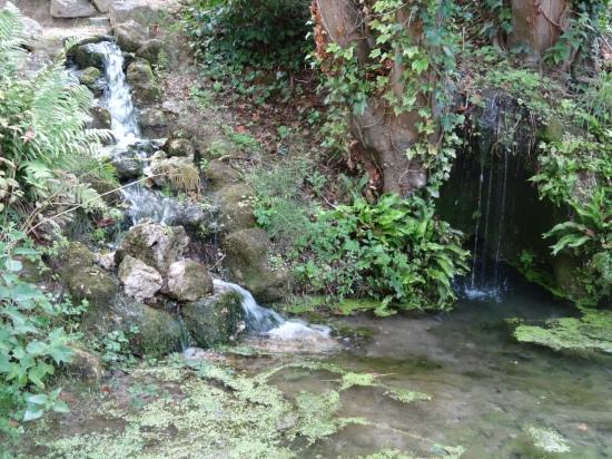 da Vinci's last garden