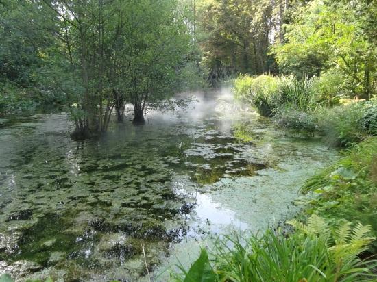da Vinci's last garden, Amboise