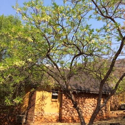 Pilanesberg