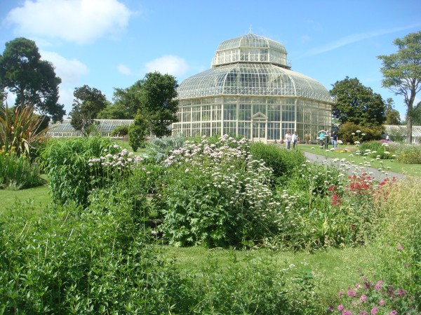 The National Botanic Garden, Kilmainham.