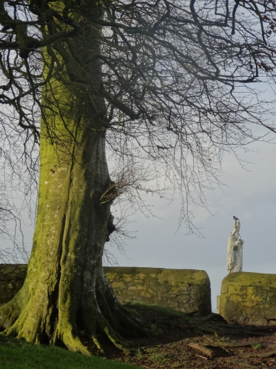 St Patrick's statue on the Hill of Tara.