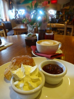 "Coffee, scone and homemade rhubarb jam at ""Maguires""."