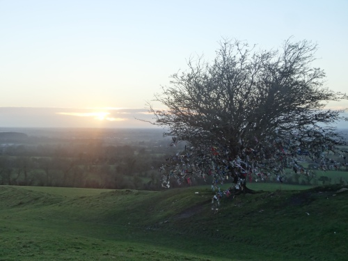 Rag tree on the Hill of Tara
