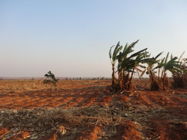 The arid landscape around Wimbe