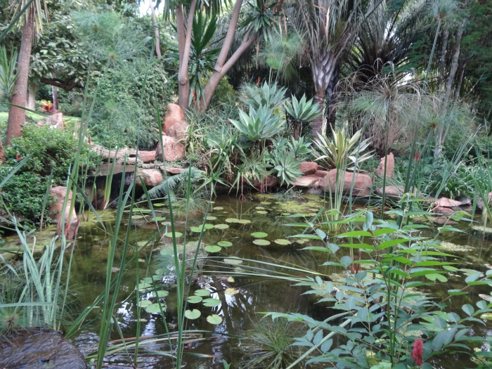 The beautifully landscaped pond