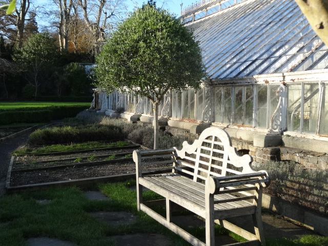 A Lutyens-style bench in front of the Victorian greenhouses