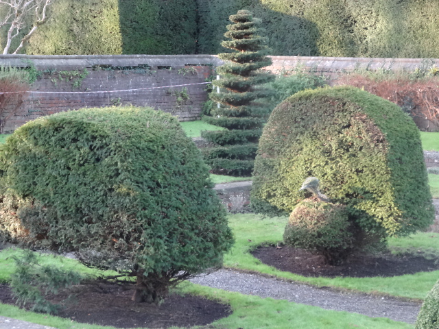 Topiary at Farmleigh