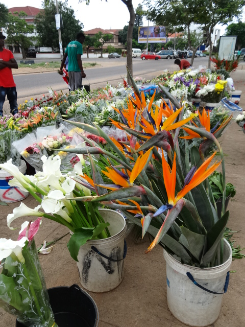 Flower market Maputo