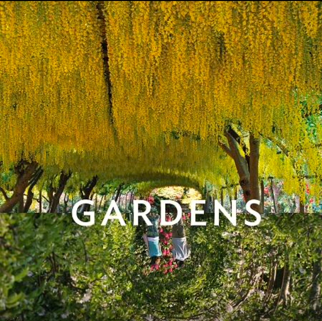 Reflections : Gardens. Roads Publishing