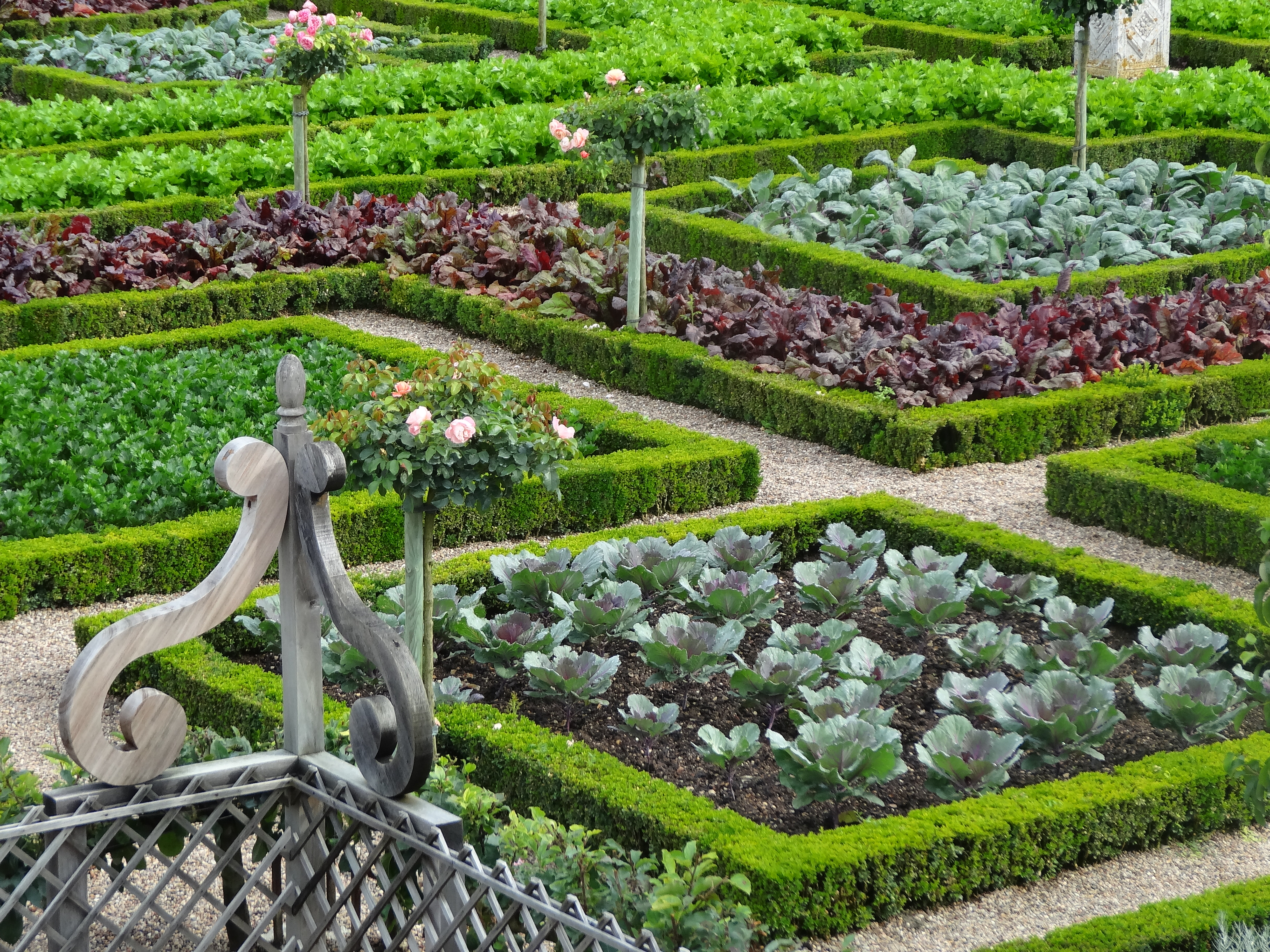 The iconic gardens at villandry jardin for Jardin in french