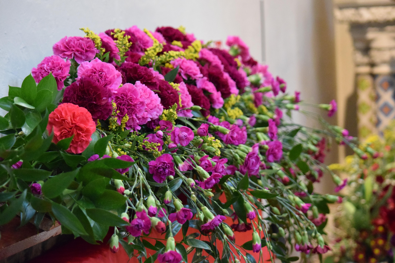 Flower Baskets Dublin : A flower festival in dublin s inner city jardin
