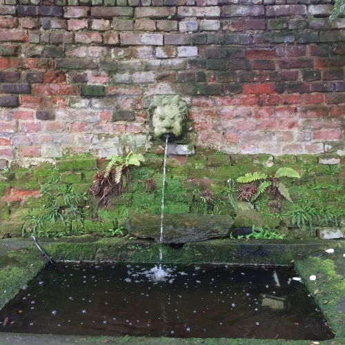 An ancient fountain secreted in a corner.